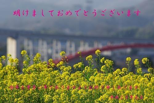 IMGP2536-2.jpg