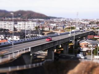 RIMG0018_1.JPG